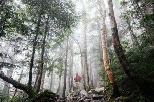 4 Must-Do Pilgrim Trails