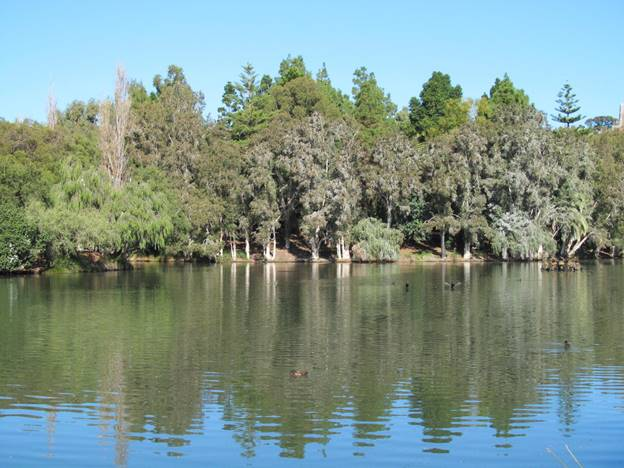 John Oldham Park – One Of The Top Spots To Travel In Perth