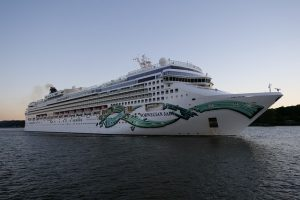 Norwegian Cruise CEO: Next three months key for return to cruising